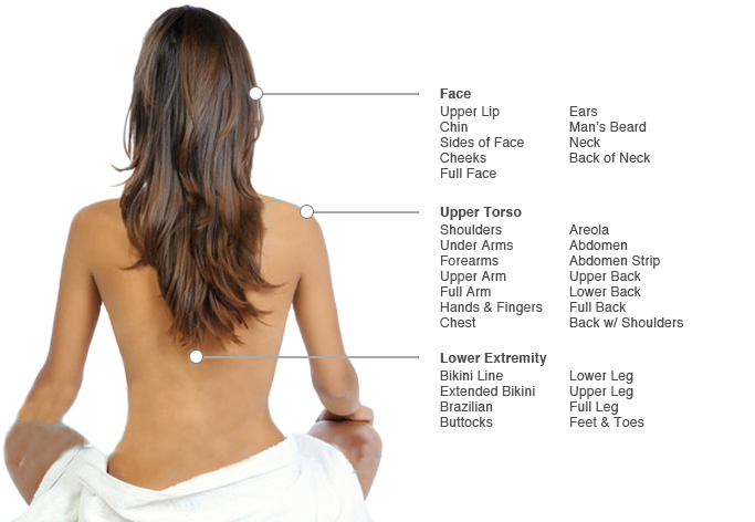 Image showing areas of body treatment is available for hair removal.
